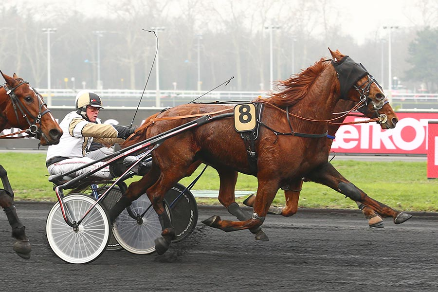 Flabbergasted – Vincennes
